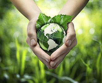 Umweltmanagement